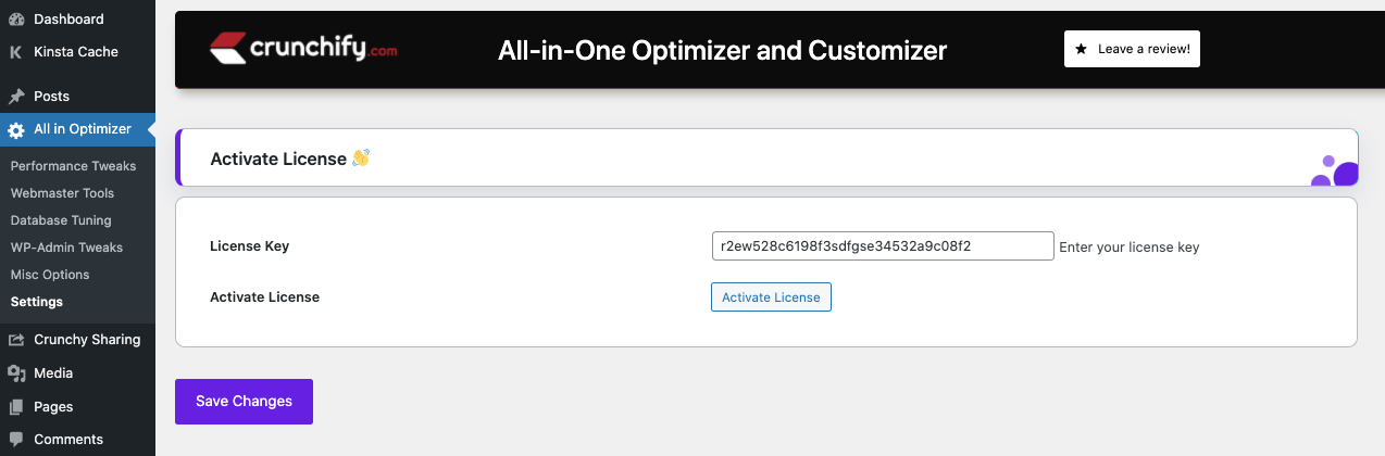 All-in-One Optimizer and Customizer WordPress Plugin - Activate License page